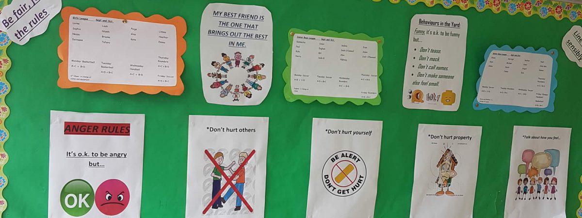 Glenbrohane Active School Flag